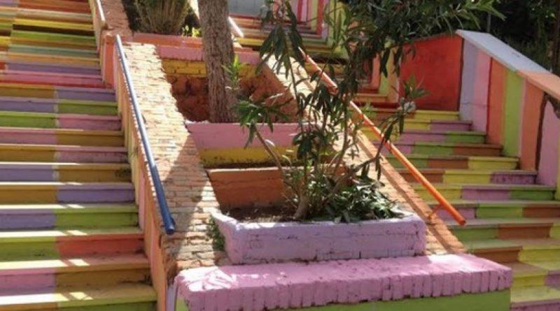 Immagine tratta da www.greenme.it